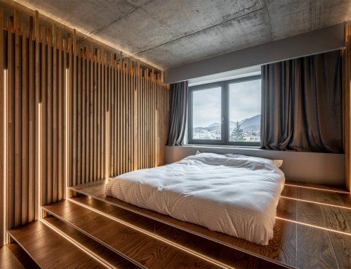 Fascinatia lemnului. Un apartament